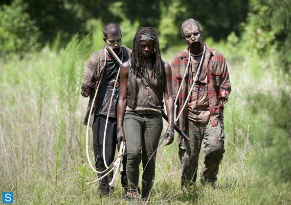 409_Michonne_Pet_Walkers